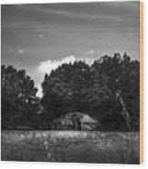 Barn And Palmetto-bw Wood Print