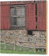 Barn And Sheep Wood Print