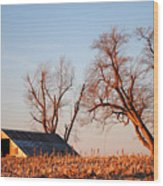 Barn At Sunrise Wood Print
