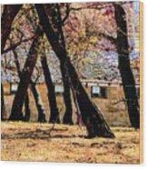 Barn Behind Trees Wood Print