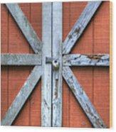 Barn Door 2 Wood Print by Dustin K Ryan