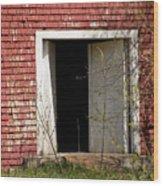Barn Door And Cedar Wood Print