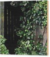 Barn Door Vines Ink Wood Print