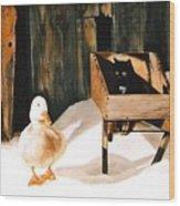 Barn Fellows Wood Print