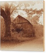 Barn Hocking Co Ohio Sepia Wood Print