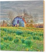 Barn In Field Of Flowers Wood Print by Geary Barr