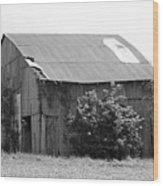 Barn In Kentucky No 58 Wood Print