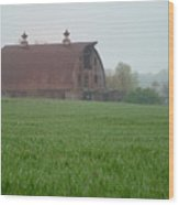 Barn In Summer Wood Print