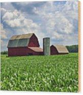 Barn In The Corn Wood Print
