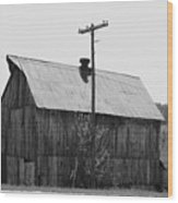 Barn On The Side Of The Road Wood Print