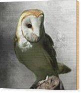 Barn Owl Wood Print by Crispin  Delgado