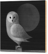 Barn Owl Full Moon Wood Print