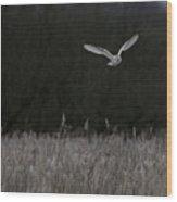 Barn Owl Hunting At Dusk Wood Print