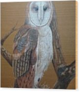 Barn Owl On Tree Wood Print