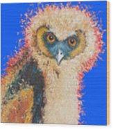 Barn Owl Painting Wood Print