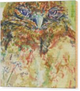 Barn Owl Thinking Wood Print