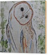 Barn Own Impressionistic Painting Wood Print