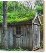 Barn With Green Roof Wood Print