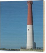 Barnegat Lighthouse And Inlet New Jersey Wood Print