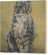 Barnhardt's Cat Wood Print
