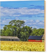 Barns In The Distance Wood Print