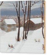 Barns Of West Sand Lake Wood Print