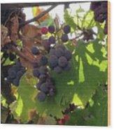 Barnyard Grapes Wood Print