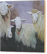 Barnyard Series Wood Print