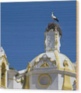 Baroque Church And Storks Nest Wood Print