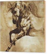Baroque Horse Series IIi-i Wood Print
