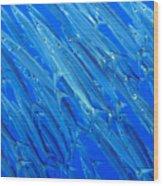 Barracuda At Palikir Pass Wood Print