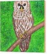 Barred Owl 08-18-2015 Wood Print