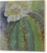 Barrel Cactus In Bloom Wood Print