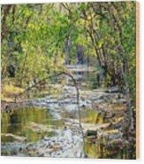 Barren Fork Creek Wood Print
