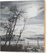 Barren Land Wood Print