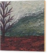 Barren Landscapes Wood Print