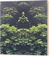 Barrier Wood Print