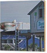 Barrier Island B N B Wood Print