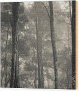 Barrington Mist Wood Print