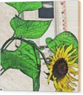 Barrio Sunflower Wood Print by Sarah Loft