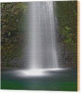 Base Of The Falls Wood Print