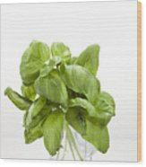 Basil Wood Print