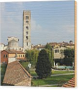 Basilica Di San Frediano With Palazzo Pfanner Gardens Wood Print