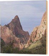 Basin View Big Bend Texas  Wood Print