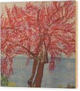 Bask In Blooming Beauty Wood Print