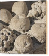Basket Of Marble Fruit In Venice Wood Print