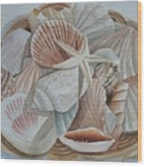 Basket Of Shells Wood Print