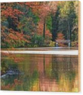 Pond In Autumn Wood Print