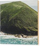 Bass Strait Island Wilderness Wood Print