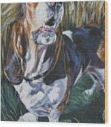 Basset Hound In Wheat Wood Print
